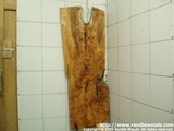 Maple Burl/crotch