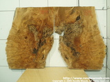 Burl Bookmatch set - Late spalt