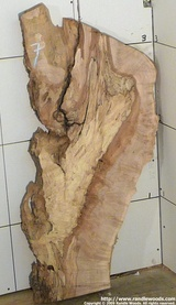 Maple Burl Slab - Spalt burl